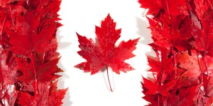 canada leaves